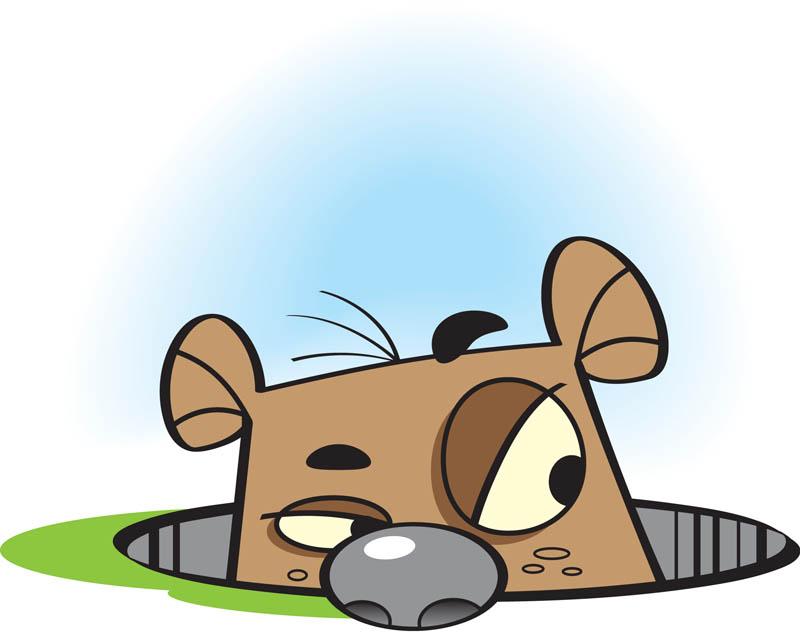 Groundhog_2013